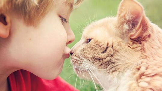 Pri domácich zvieratkách dbajte na...