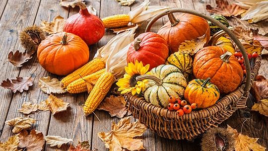 FOTO 15 nápadov na krásne jesenné...