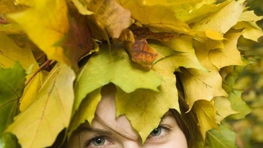 Skvelé jesenné tvorenie. Čo všetko si spolu...