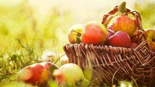 Jablko, hrozno, cvikla a cesnak. Silná...