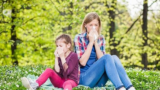 Alarmujúce. Alergiu bude mať čoskoro každý...